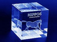 Statuetka Pamiatkowa z koniem grawerowana laserem 3d - Prezent od Stowarzyszenia Hippos