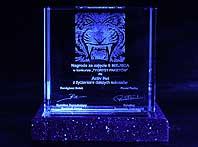 Nagroda w konkursie Tygrysy Parkietu