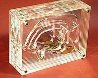 Wycinanie plexi, pleksy, pleksi laserowo - Prezent Skarbonka