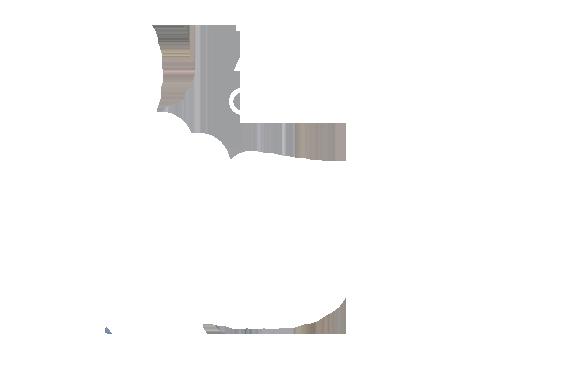 Urny Wyborcze Zgodne z Uchwałą PKW