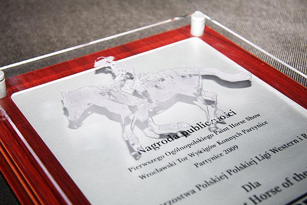 Grawerowanie pleksi nagroda publiczności dla firmy