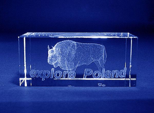 Szklana statuetka okolicznościowa na expo - odkryj Polskę widok z przodu