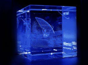 Szklana statuetka nagroda w windsurfingowych zawodach sportowych - widok z tyłu 2
