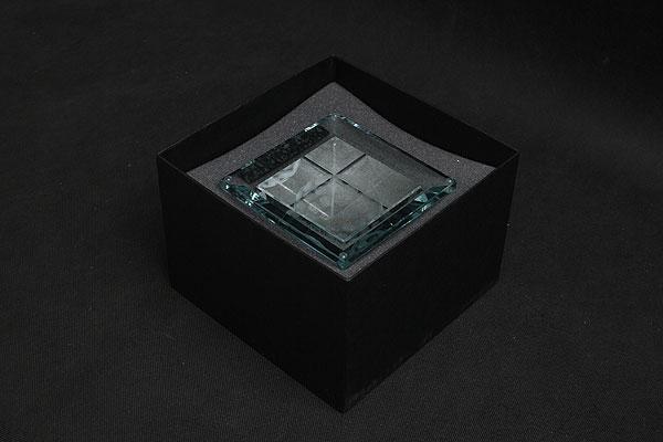 Pudełko z czarnego sztywnego kartonu wypełnione gąbką dopasowaną do kształtu szklanej statuetki